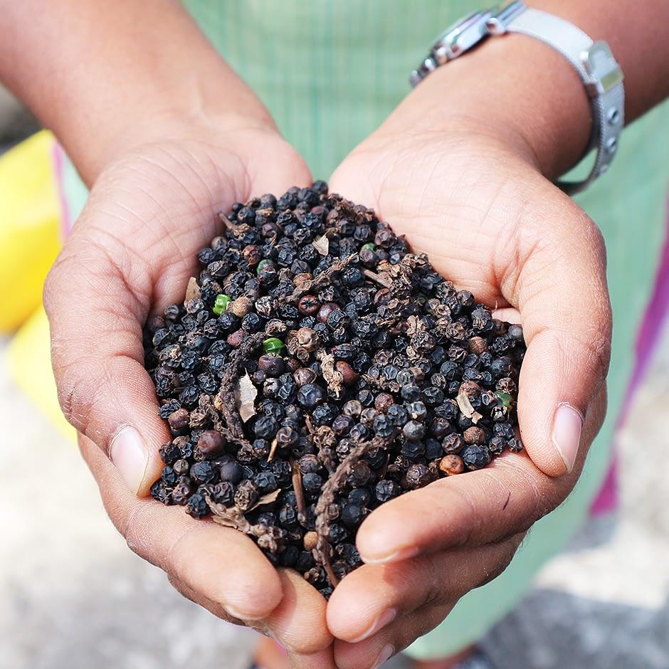 SugaVida Website Turmeric Superblend Black Pepper Image
