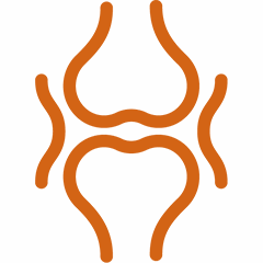 SugaVida Website Turmeric Superblend Ginger Joints Bones Benefit Image