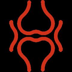 SugaVida Website Bones Joints Benefit Image red