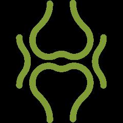 SugaVida Website Turmeric Superblend Cardamom Joints Bones Benefit Image