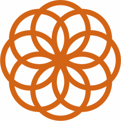 SugaVida Website Turmeric Superblend Ginger Liver Benefit Image