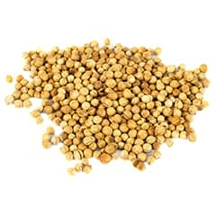 SugaVida Website Coriander Seed Image